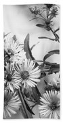 Black And White Asters Beach Towel