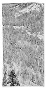 Black And White Lake Tahoe California Covered In Snow During The Winter Beach Towel