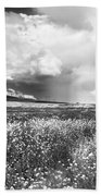 Black And White Meadow Beach Towel