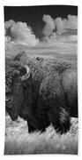 Black And White Photograph Of An American Buffalo Beach Towel