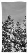 Black And White Snow Covered Trees Beach Towel