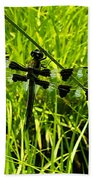Black And White Winged Dragonfly Beach Towel