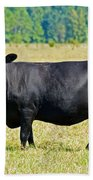 Black Angus Cattle Beach Towel