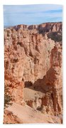 Black Birch Canyon Lookout Beach Towel