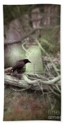 Black Bird In Forgotten Graveyard Beach Towel