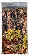 Black Canyon Spires Beach Towel