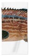 Black Grouper Beach Towel