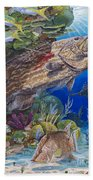 Black Grouper Hole Beach Towel by Carey Chen