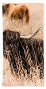 Black Highland Cow Beach Towel