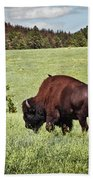 Black Hills Bull Bison Beach Towel by Robert Frederick