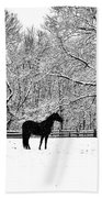 Black Horse In The Snow Beach Towel