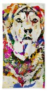Black Lab Watercolor Art Beach Towel