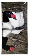Black Necked Swan Beach Towel