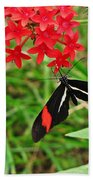 Black Red And White Butterfly Beach Towel