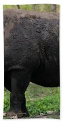 Black Rhino-19 Beach Towel