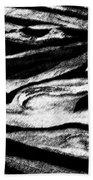 Black Sand  Beach Sheet