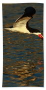 Black Skimmer Reflections Beach Towel