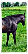 Black Stallion In Pasture Beach Towel