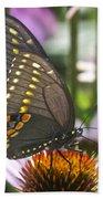 Black Swallowtail Butterfly Beach Towel