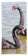 Black Swan Pair Beach Towel