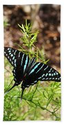 Black Swordtail Butterfly Beach Towel
