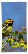 Black-throated Green Warbler Beach Towel