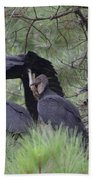 Black Vultures II Beach Towel