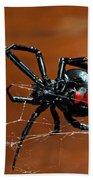 Black Widow Spider Beach Towel