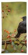 Blackbird On Branch Beach Towel