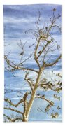 Blackbirds In A Tree Beach Towel