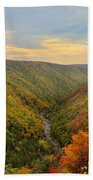Blackwater Gorge With Fall Leaves Beach Towel by Dan Friend