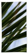 Blades Of Grass Beach Towel