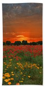 Blaze Of Glory Beach Towel