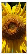 Blazing Yellow Sunflower Beach Towel