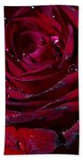 Blood Red Rose Beach Towel