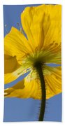 Bloom Time Beach Towel