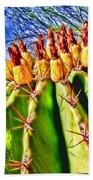 Blooming Barrel Cactus By Diana Sainz Beach Towel