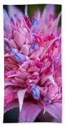 Blooming Bromeliad Beach Towel