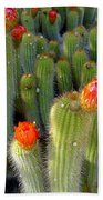 Blooming Cacti Beach Towel