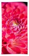 Blooming Red Flower Beach Towel by John Wadleigh