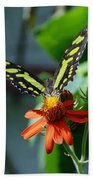 Blooms And Butterfly1 Beach Towel