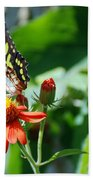 Blooms And Butterfly4 Beach Towel