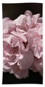 Blossom In Pink Beach Towel