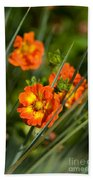 Blossoms In The Reeds Beach Towel