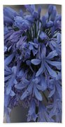 Blue Agapanthus Beach Towel