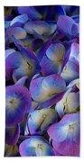 Blue And Purple Hydrangeas Beach Towel