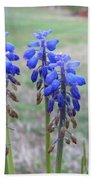 Blue Bells 1 Beach Towel