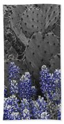 Blue Bonnet Cactus Beach Towel