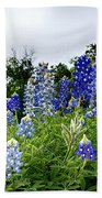 Blue Bonnet Carpet V9 Beach Towel
