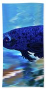 Blue Boy Beach Towel